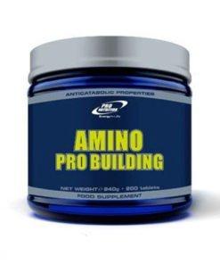 amino pro building