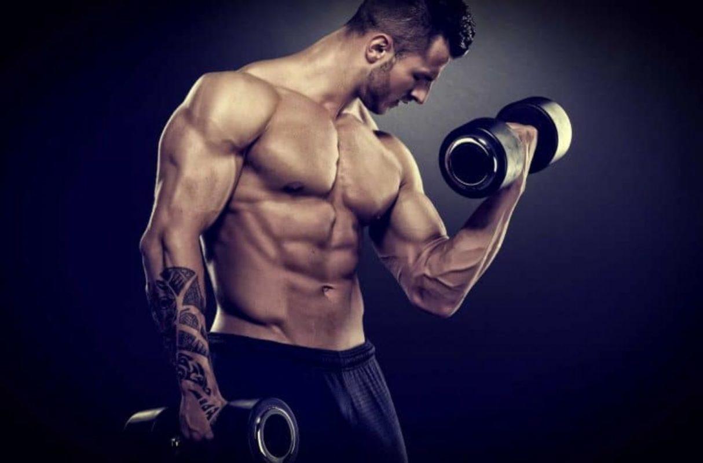 masa-musculara-PLATINIUM-PURE-CREATINE